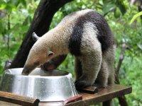 Tour de 7 días Chiapas descubriendo la Naturaleza