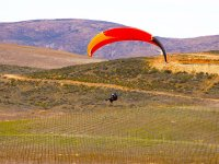 Enjoy the vineyards of Valle de Guadalupe on a paragliding flight