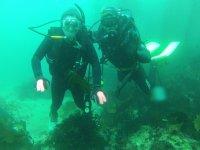 Diving in the arbolitos cove in Baja California