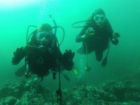 You will have a professional diver guide