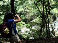 Walk and enjoy nature