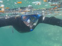 Observe an unforgettable experience doing Snorkeling