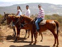 Enjoy a day riding a horse in Baja California