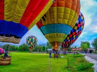 Balloons prepared for takeoff from the park