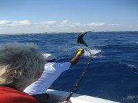 Hielera Angling Fishing in Cancun