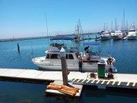 Located in one of the best docks in Ensenada