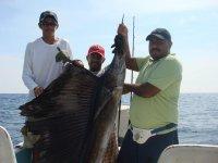 pez vela 10 millas de zihuatanejo