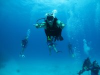 Discover the world of diving with us
