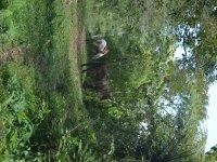 horseback riding through Cuetzalan