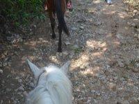 horseback riding in Puebla
