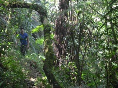 La Escondida Ecoparque de Aventura Caminata