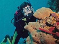 Get to know the seabed