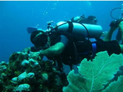 Akumal Dive Center