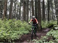 Cycling through forests in Mexico