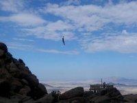 flying in zip line