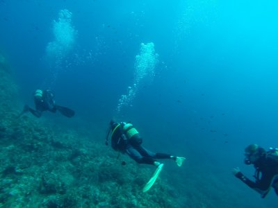 ESL Transfers Buceo