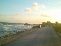 Between the road