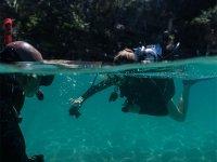 Disfruta del clima tropical sumergiéndote en el mar