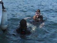 Descubre el fondo del mar