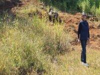 Caminatas en naturaleza