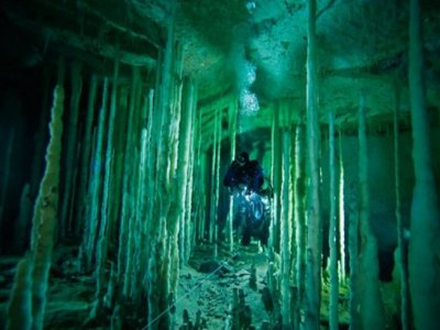 Halocline Diving Buceo
