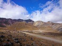 Camina por el Nevado