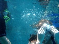 Snorkel,