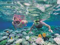 Snorkeling in the reefs