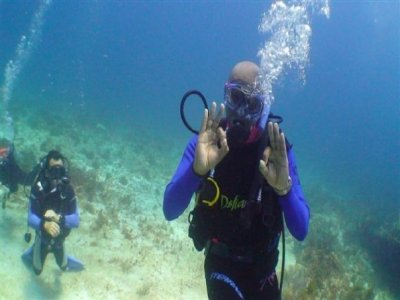 Solo Buceo Buceo