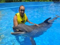 Day with dolphins