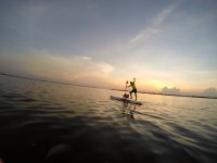 Paddle surf with pet