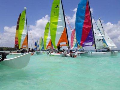 Dani Sailing Paseos en Barco