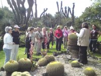 Botanical garden UNAM