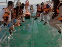 Navega en nuestro bote cristal