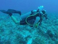 Gran experiencia en la Riviera Maya