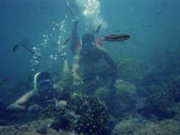 Snorkeling in the sea