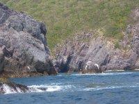 Snorkeling destination