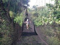 Exciting suspension bridges