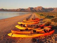 Activities in Kayaks