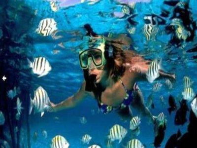 Kay-op Divers Snorkel