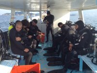 Prepared for diving