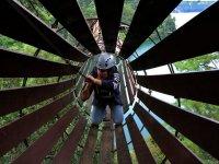 Routes through trees