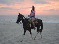Mira el amanecer con tu caballo