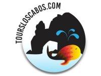Tours Los Cabos Cabalgatas