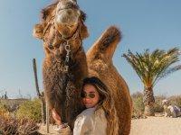 Experimenta la sensación de estar con un Camello