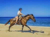 Cabalga por la orilla del mar
