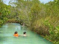 Nadar entre los manglares