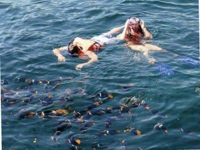 Puerto Vallarta Yates Snorkel