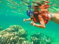 Las mejores actividades de snorkel