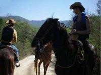 Rutas a caballo con jinete